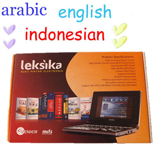 Professional electronic dictionary developers and research